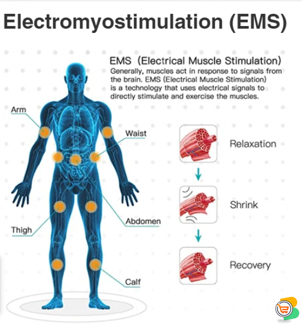 Electromyostimulation (EMS) Body Fitness, Loss  Weight, Training Outfits And Equipment.