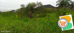 ISHERI NORTH IS THE NEW LAGOS