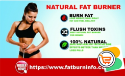 Lose Weight Fast With Our Plans