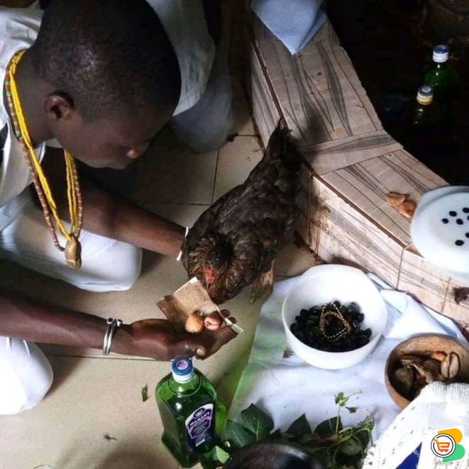 The best powerful spiritual herbalist native doctor in Nigeria +2349059756264