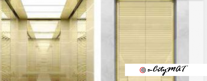 Commercial/Residential 8 Persons Usage 630KG Passengers Elevator BY HIPHEN SOLUTIONS